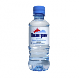 Доставка воды Пилигрим негаз 0,25 литра пэт (1 уп./8 бут.)