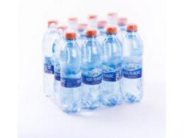 Доставка воды Эдельвейс газ. 0,5 л, пэт (1 уп./12 бут.)