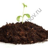 Земля плодородная кировск