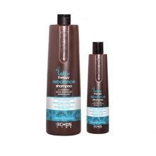 REBALANCE SHAMPOO Нормализующий шампунь против жирной кожи головы 350/1000 мл