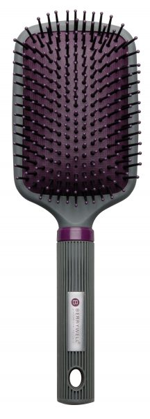 Paddle Brush Ion