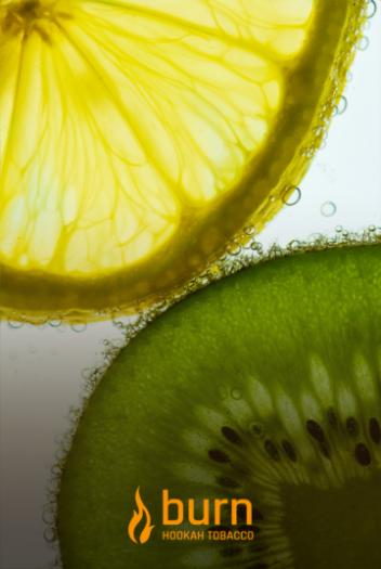 Табак Burn - Kiwi Lemon (Киви Лимон) 100 гр