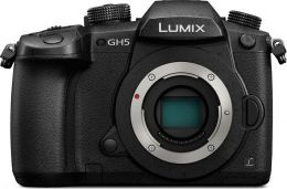 Panasonic Lumix DMC-G5 Body