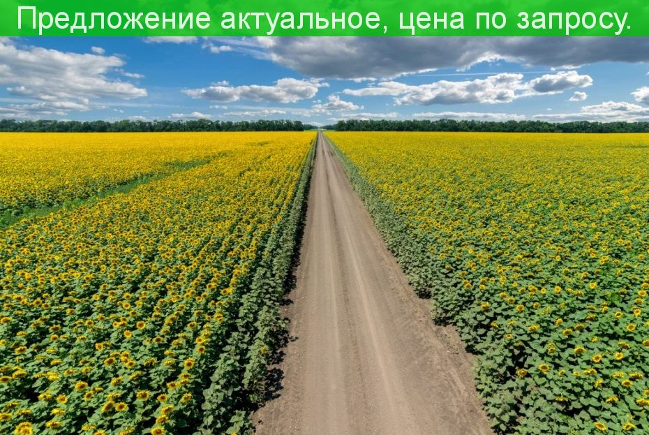 Продается фермерское хозяйство с землей 1373 Га.(Земли засеяны).