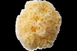 Органическая Морская Губка 6х7см маленькая