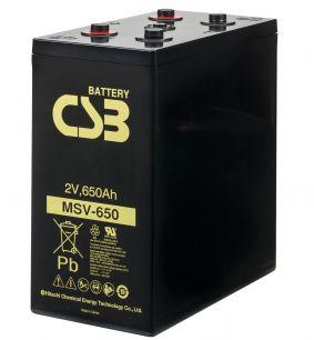 MSV 650
