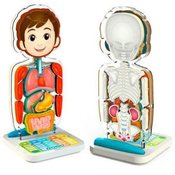 Oregon Scientific SA218 Занимательная анатомия (обучающее устройство)