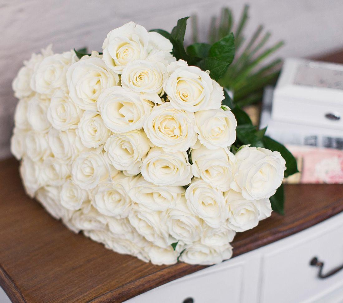 Роза Mondial 60 см.