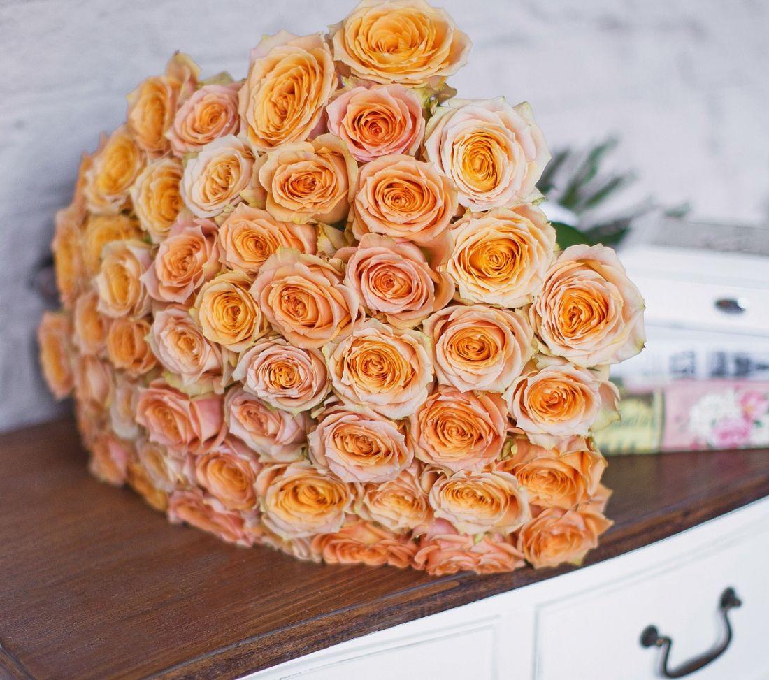 Роза Warm 60 см.