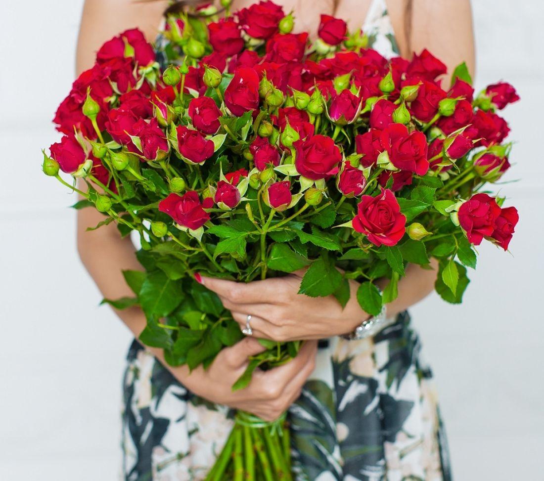 21 кустовая роза Red