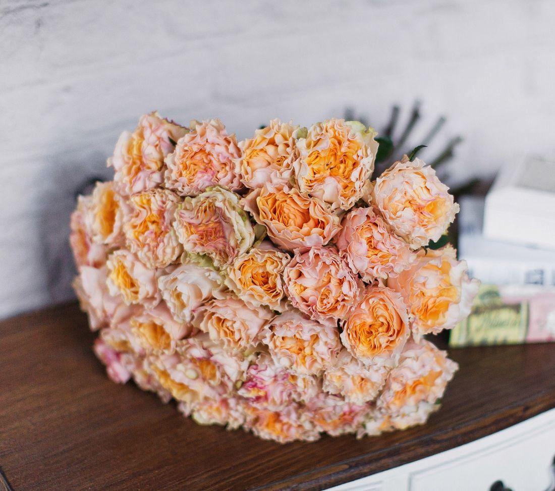Роза Campanella 60 см.