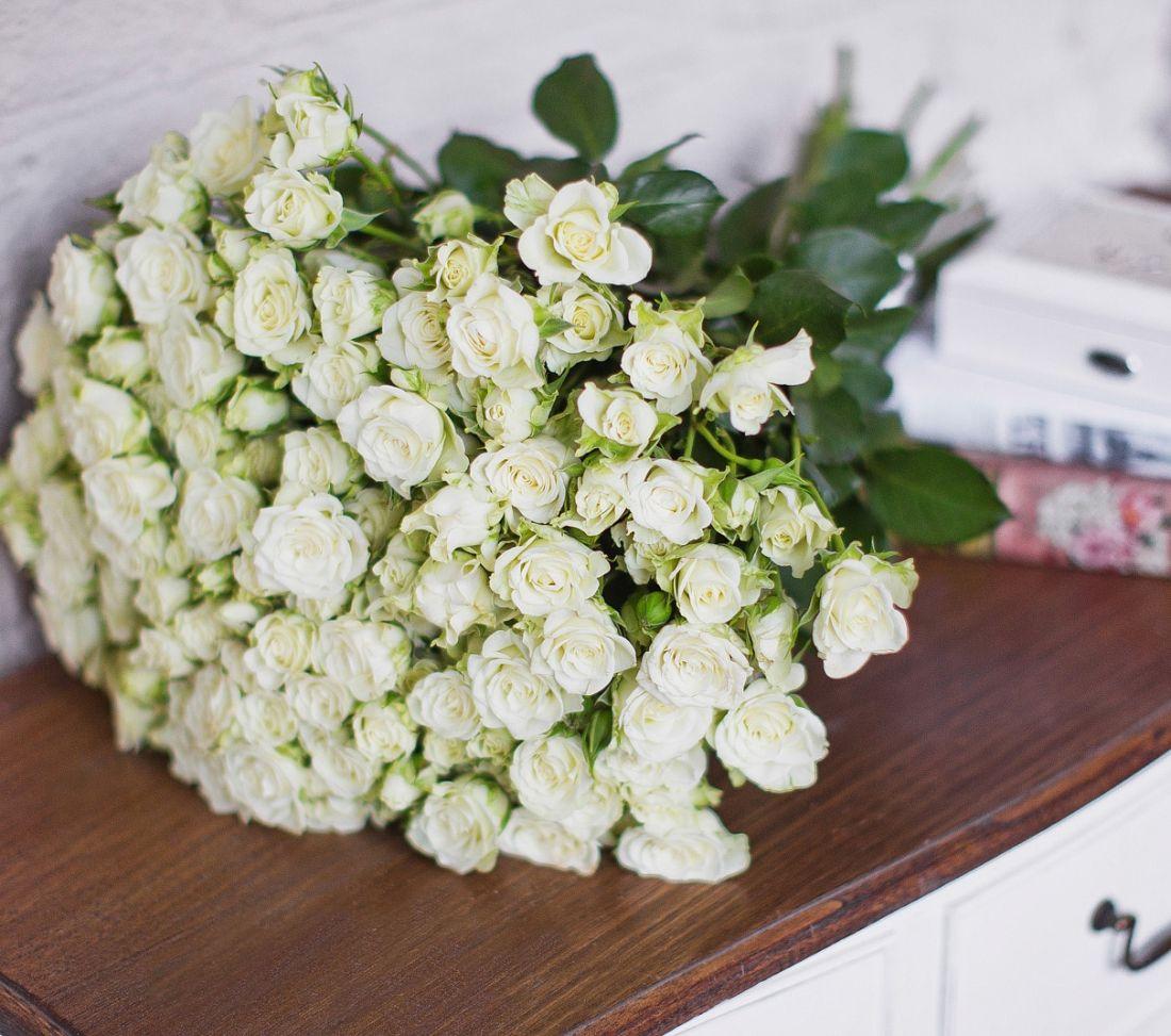 Роза кустовая White 60 см.
