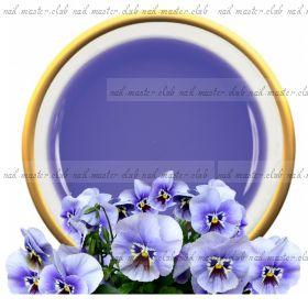 Gel Violett Clear Виолет гель 100 мл