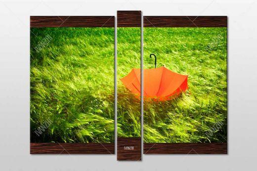 Красный зонт на зеленом поле