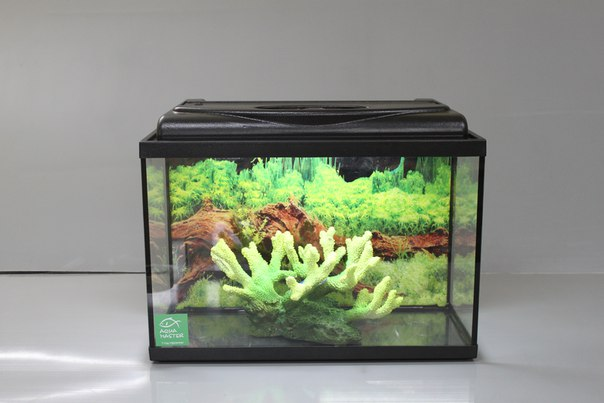Прямоугольный аквариум Риф с крышкой
