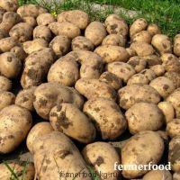 Картофель 1/кг