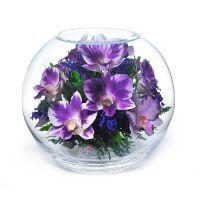 Стабилизированные орхидеи в вазе