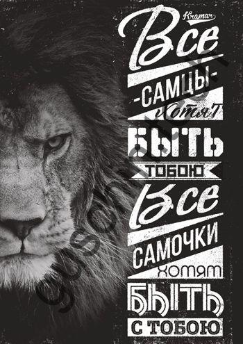 "Декоративная панель ""Guschin"" & ""Саша Крамар"" - ""Самцы самочки"""