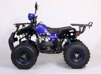 Avantis Classic 8+ 125 сс Квадроцикл бензиновый синий вид 2