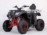 MOTAX ATV Grizlik 200 сс вид 1