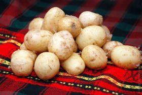 Картофель молодой (Азербайджан)