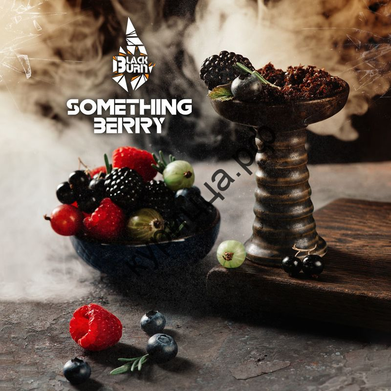 BURN BLACK SOMETHING BERRY 1ГР