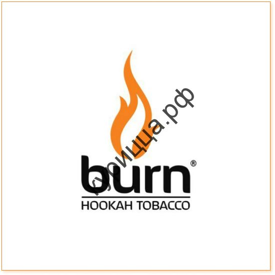 BURN MILD BERRY 1 ГР