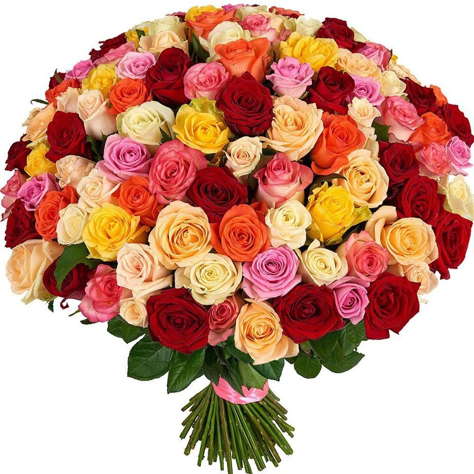 99 эквадорских роз (микс)