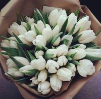 Тюльпаны 49 шт