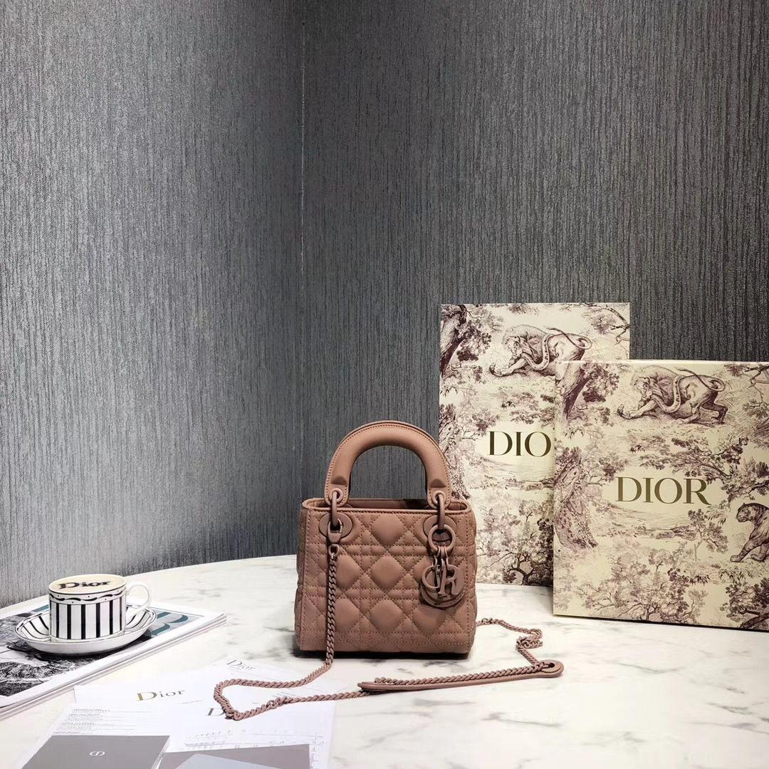 Lady Dior 17 cm