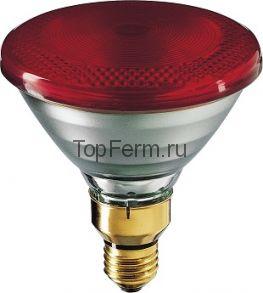 Инфракрасная лампа 100 W