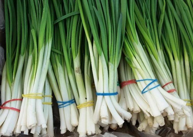 Зеленый лук купить