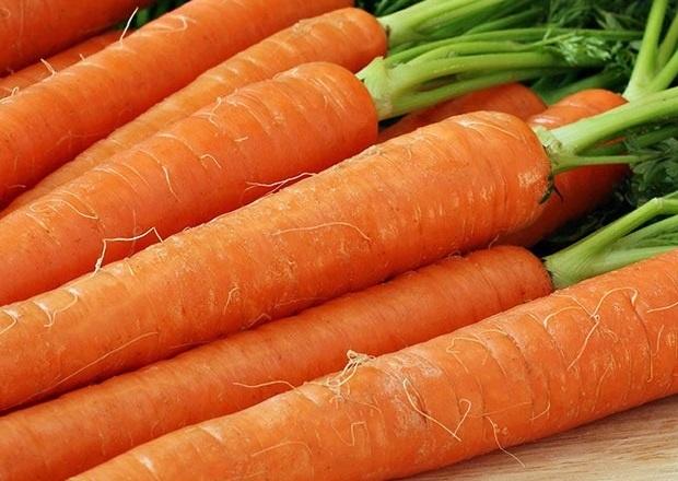 Купить морковь оптом