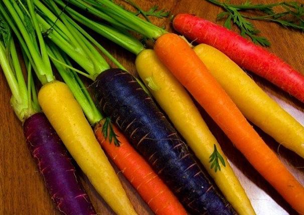 Морковь оптом