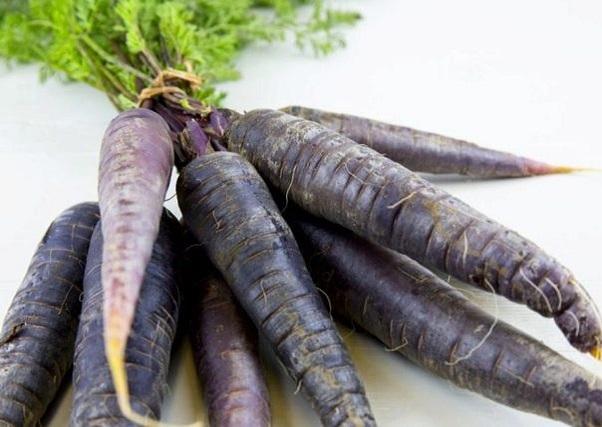 Черная морковь купить