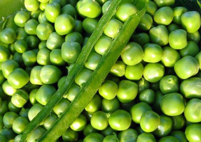 Купить зеленый горошек свежий