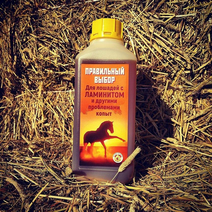 Масляная подкормка для лошадей страдающих ламинитом и другими проблемами копыт. 1 л. Богатырские корма