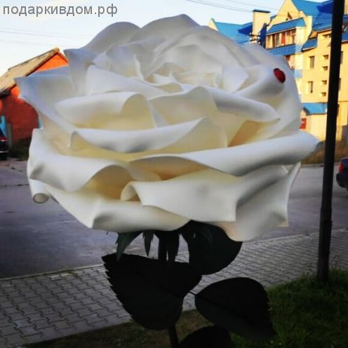 ростовая белая роза светильник