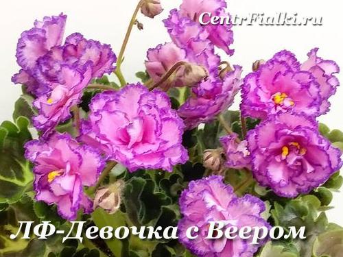 ЛФ-Девочка с Веером (Л.Федосеева)