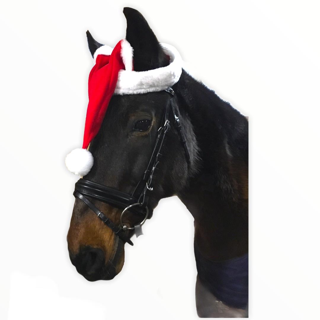 Ушки новогодние для лошади