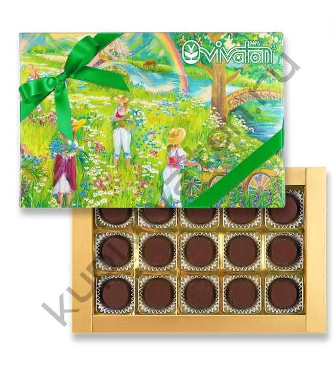 """Шоколадные конфеты с """"Экстрактом ВИВАТОН"""", 170гр, коробка."""