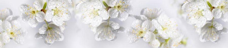 Кухонный фартук BS 191 - Цветы яблони
