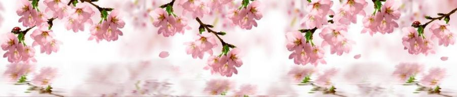 Кухонный фартук BS 192 - Цветы сакура