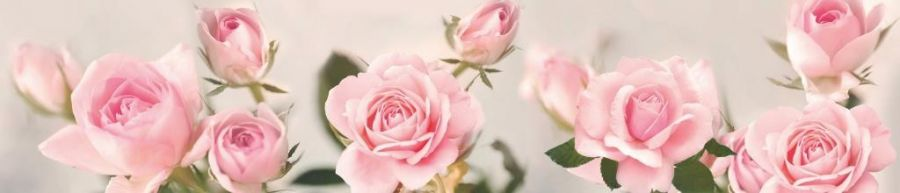 Кухонный фартук ТОР 56 - Розовые розы
