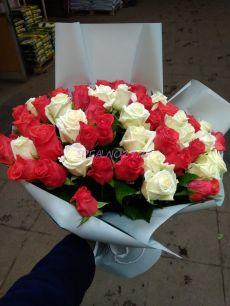 Роза Аваланж 50 см.