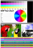 Фотопечать цветная 13 на 18 глянец/матовая