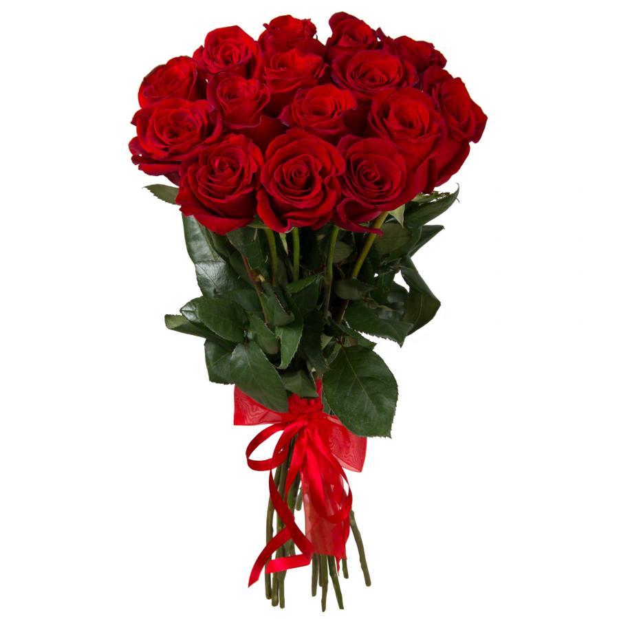 Розы красные от 15 шт.