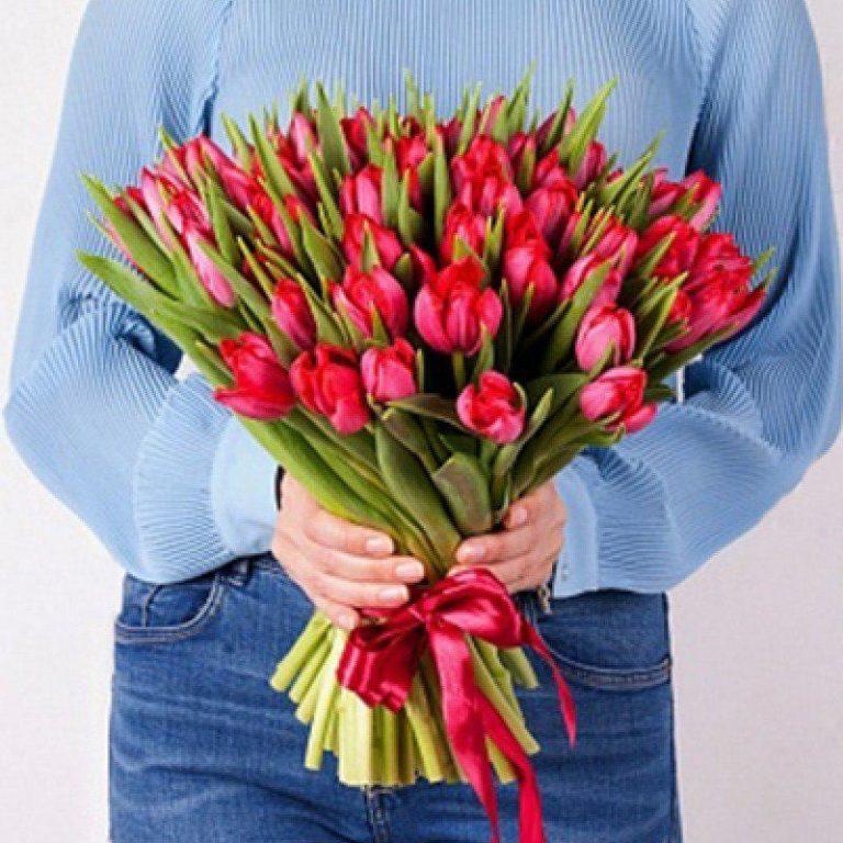 Тюльпан 51 шт (красный)