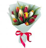 Тюльпаны 15 шт (микс)