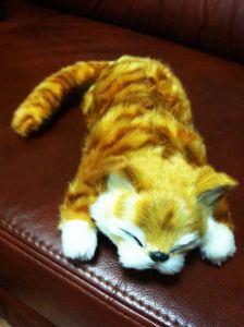 Ржачный кот (катается от смеха по полу)